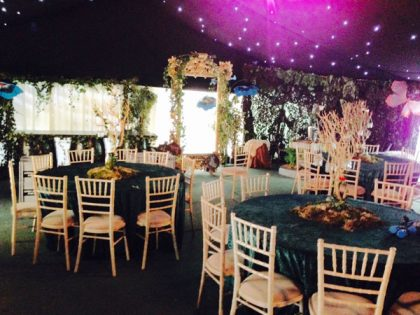 Incredible decorations supplied by Theme Traders for a Birthday Party