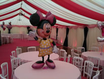 Fabulous Disney princess party with pink roof overlays and pink carpet