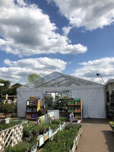 A 9mx18m marquee on 3m legs with clear roof and gable panels